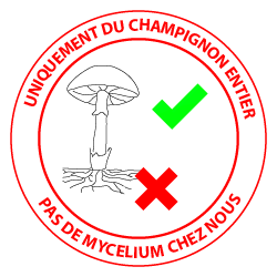 pas de mycelium